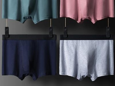 underwear-211252